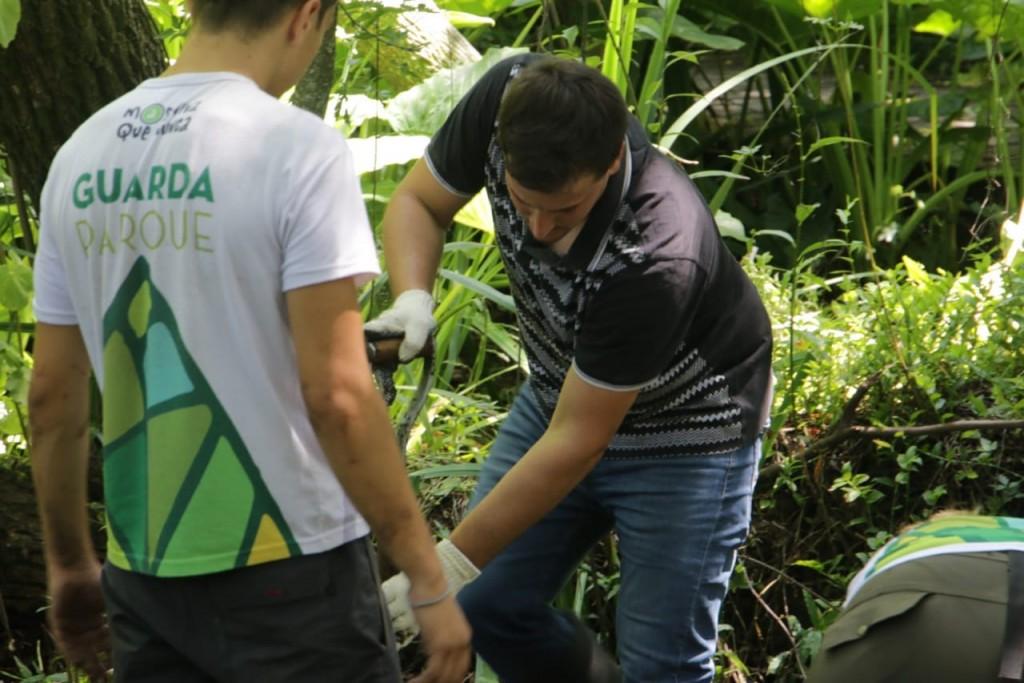 Avellaneda: Jornada voluntaria de saneamiento en la Eco Área Municipal