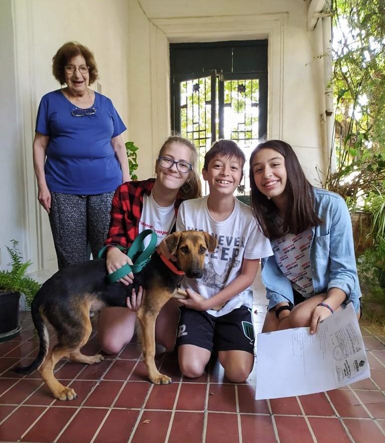 Escobar: Récord de adopciones en la Web del Hospital de Zoonosis, 20 mascotas consiguieron hogar