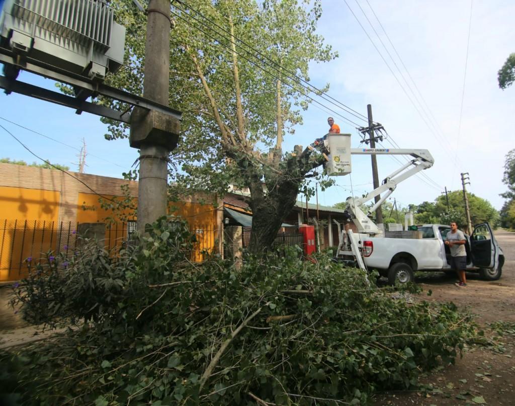 Alejandro Korn: El municipio realiza podas de árboles para mejorar la iluminación