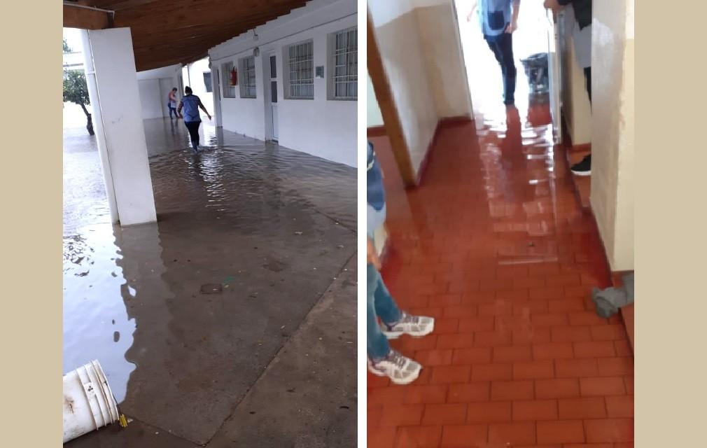 Lincoln: Denuncian al Consejo Escolar por no realizar la limpieza de los desagües del CEC 803 de Pasteur