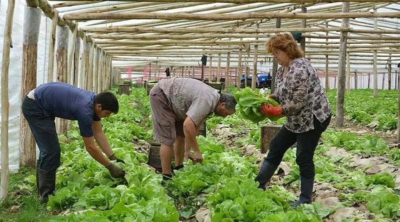 """Aníbal Duarte: """"La gente del interior vino expulsado por la falta de trabajo, no porque quiere vivir en una ciudad"""""""