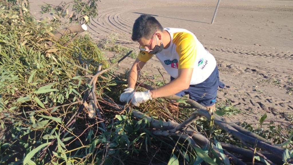 Monte Hermoso: Continúa el armado de enquinchados en playa para la retención de arena y fijamiento de médanos