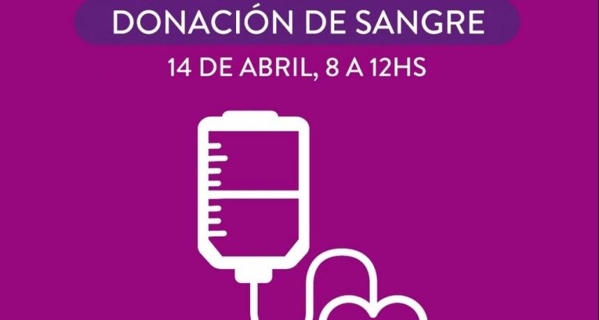 Vicente López realizará una nueva jornada de donación de sangre
