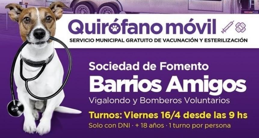Campana: El quirófano móvil visitará Barrios Amigos