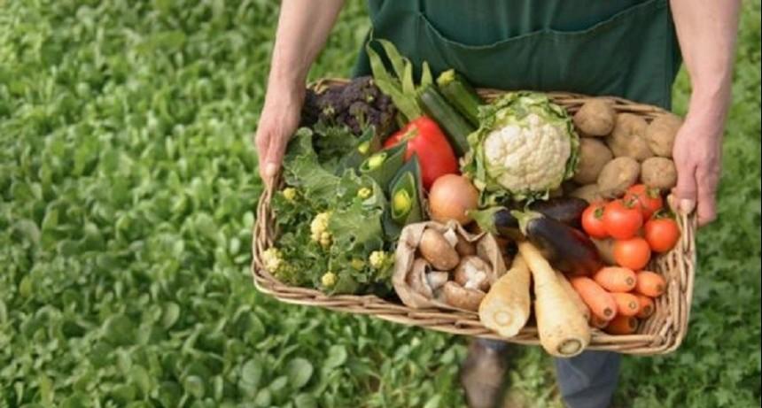 """Aníbal Duarte: """"La importancia de la agricultura familiar está dada en que producen el 70% de los alimentos que llegan a la mesa de los argentinos"""""""