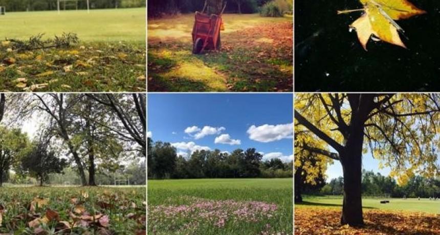 Campana: El Municipio invita a votar la fotografía más linda de la ciudad en otoño