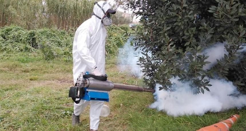Berisso: Avanzan los trabajos de desinfección y fumigación en la ciudad