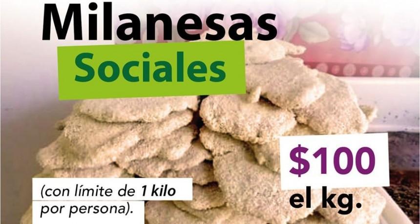 Arrecifes: Mediante un acuerdo la milanesa de pollo se vende a $100 el Kg