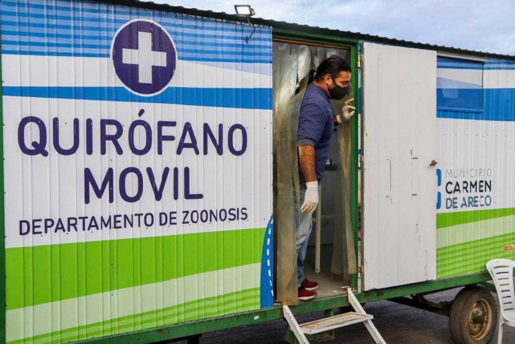 C. de Areco: Castraciones gratuitas en el CAPS