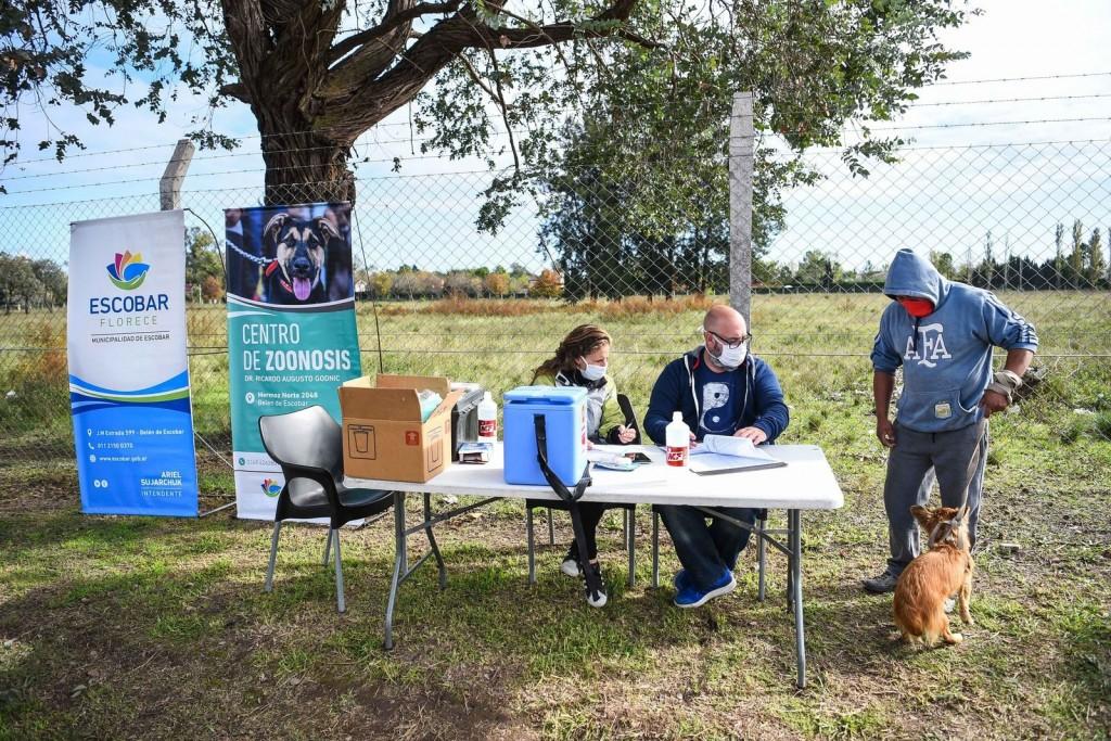 Escobar: Más de 1300 mascotas ya recibieron la vacuna antirrábica durante la primera semana de la campaña anual de la Municipalidad