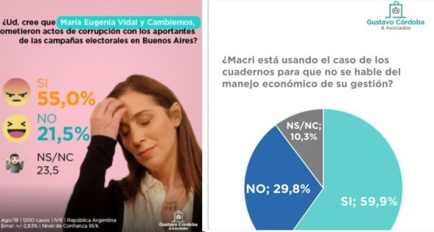 """El 55% cree que Vidal es corrupta sobre los aportes """"truchos"""""""
