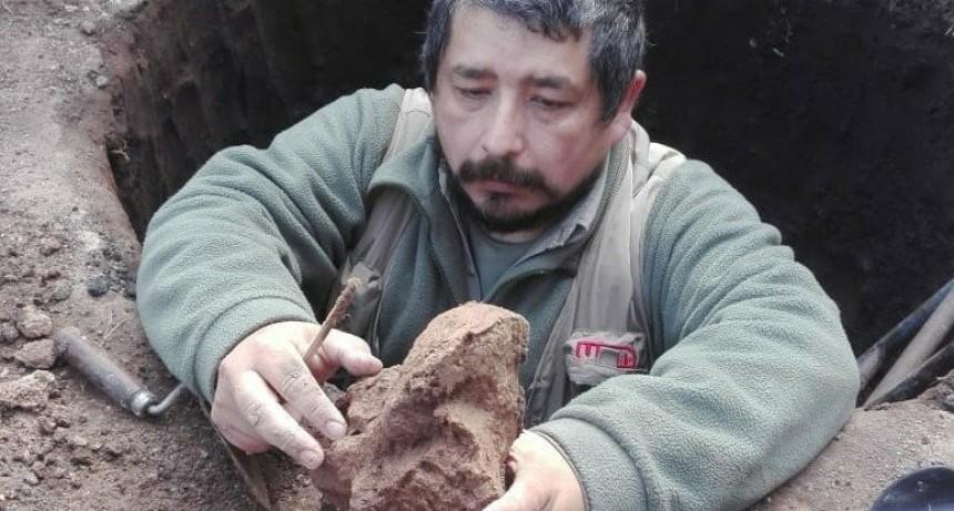 Luján: Hallazgo paleontológico de un herbívoro de 3,5 metros de largo en vivienda céntrica