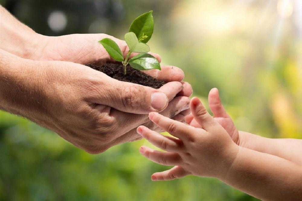 Ituzaingó: Por el Día de la Conciencia Ambiental, se podrá enviar un video y participar de premios