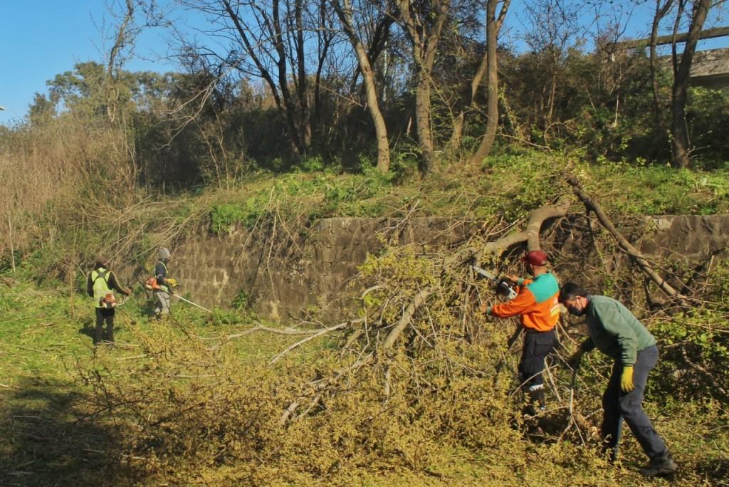 Luján: Trabajos de desmalezamiento y limpieza en barrio Universidad