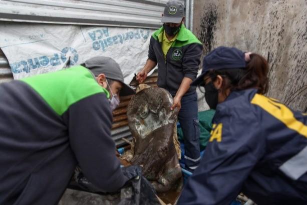 El Ministerio de Ambiente decomisó productos de fauna silvestre durante allanamientos en San Justo y Florencio Varela
