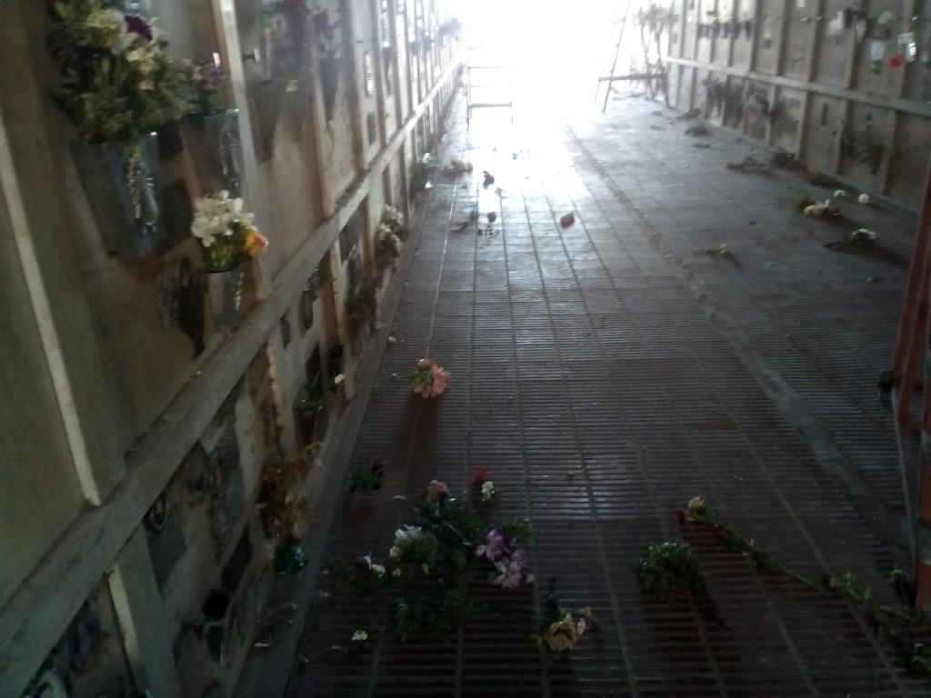 Azul: Vandalismo en el Cementerio Municipal
