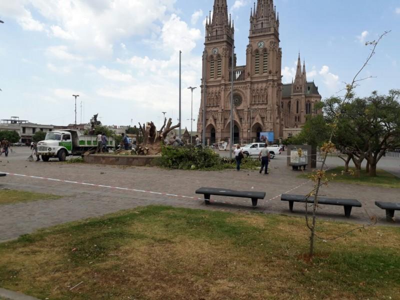 Luján: Por el fuerte temporal murieron dos hombres y cayó el ombú frente a la Basílica