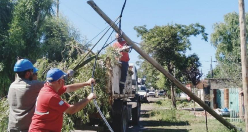 Campana: El Intendente destacó el intenso trabajo del Municipio frente a los daños causados por el temporal